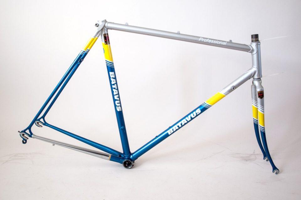batavus professional frame
