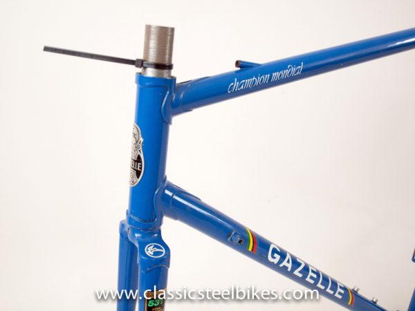 Gazelle Champion Mondial AA-Special Frame