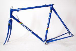 gazelle-champion-mondial-aa-super-frame-55ct